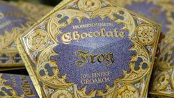 Cioccorana-Chocolate-Frog