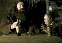 HP6 Hagrid and Sliznort