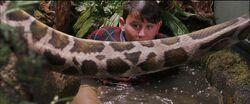 Harry-potter1-Dudley snake