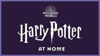Harry Potter at Home Wizarding World