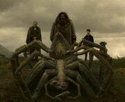 Aragog's funeral 2