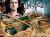Hermioneswandlg
