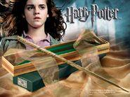 Hermione's Wand
