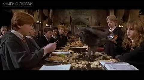 Harry Potter and the Chamber of Secrets HD trailer