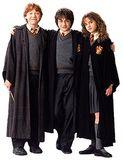 3. Ron, Harry & Hermione