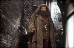 HagridKnockturn