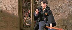 Harry-potter1-seeker harry