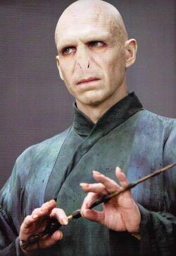 Lord-Voldemort-lord-voldemort-29805023-483-700