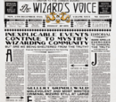 The Wizard's Voice