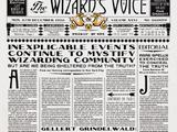 Голос волшебника