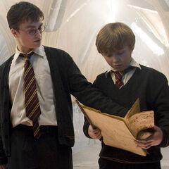 Гарри Поттер (5 курс) и Найджел Уолперт (2 курс)