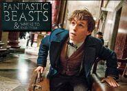 Fantastic Beasts(1)