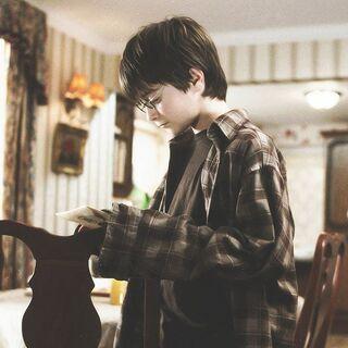 Рубашка Дадли на Гарри