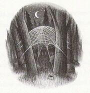 AragogSpider