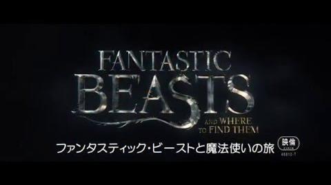 映画『ファンタスティック・ビーストと魔法使いの旅』特報【HD】2016年公開