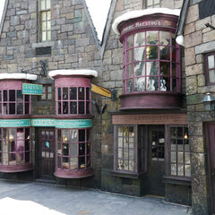 Витрины в «Волшебном мире Гарри Поттера»