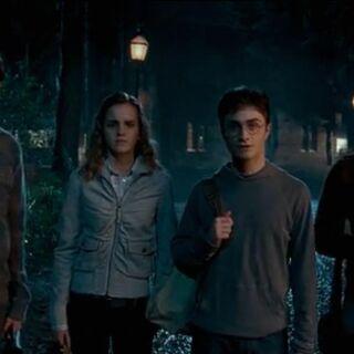 Гарри с своими друзями