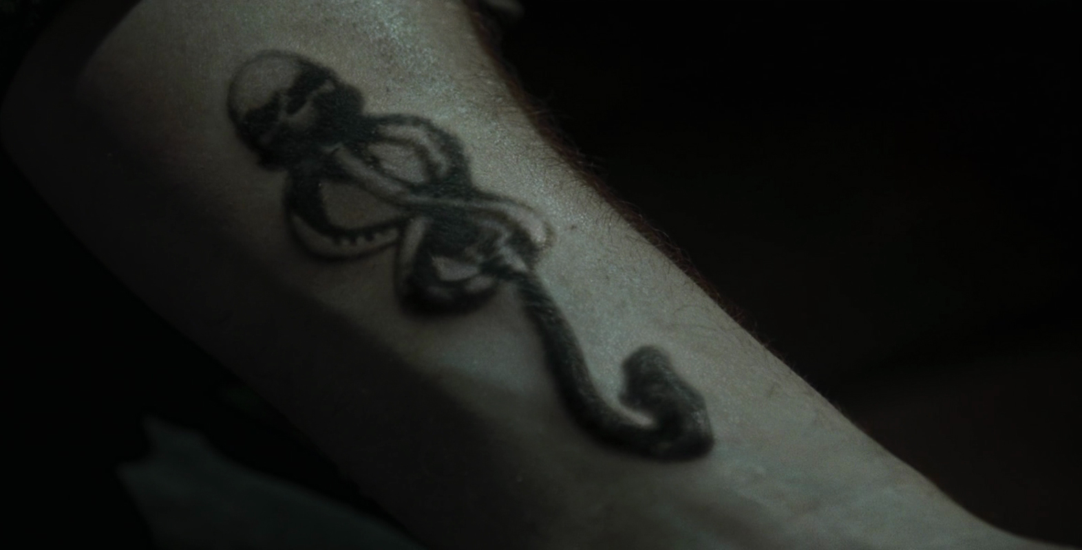 Dark Mark Harry Potter Wiki Fandom Powered By Wikia Snake Skeleton Diagram The Skull At Very On Arm