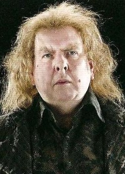 Image result for peter pettigrew