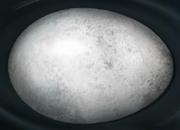 Hippogriff egg