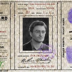 Идентификационная карта мракоборца Гарри Поттера