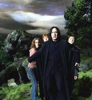 Severus Rogue trio