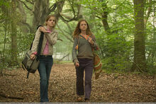 Hermione and Ginny