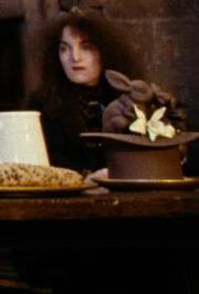 Unidentified female Hogwarts employee (IV)