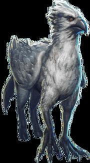 BuckbeakWU
