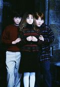12. Harry, Hermione & Ron (Harry Potter 1)