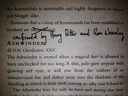 Fantastyczne Zwierzęta 2 - notatki Harry'ego i Rona