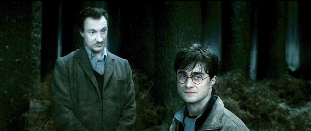 File:Harry-potter7-harry lupin.jpg
