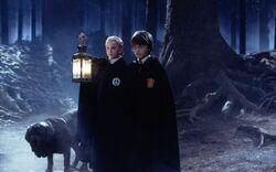 Клык с Гарри и Драко в Запретном Лесу
