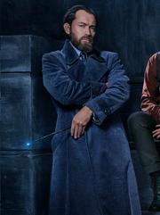 Dumbledorefz