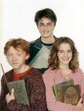 6. Ron, Harry & Hermione