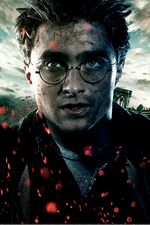 Harry main
