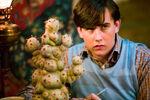 Neville Longbottom showed his interest in Herbology