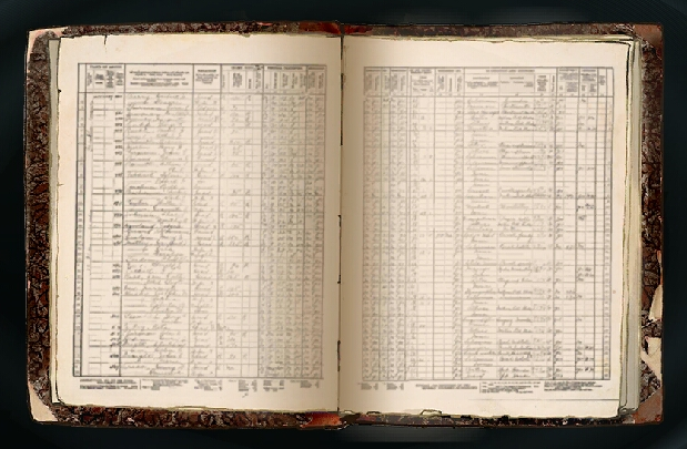 File:Customer Records.png