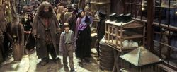 Diagon Alley-Hagrid and Harry