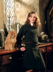 Hermione e Grattastinchi