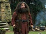 Guardião das Chaves e das Terras de Hogwarts