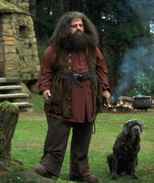 Hagrid como guardabosque