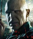 DH2 IAE Voldemort