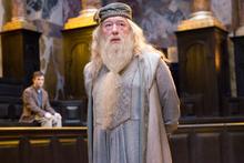 Dumbledoree