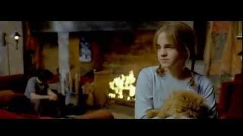 Блэк проник в Гостиную Гриффиндора (вырезанная сцена)