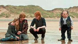 Bill-Ron-and-Hermione-the-weasley-family-30425350-663-380