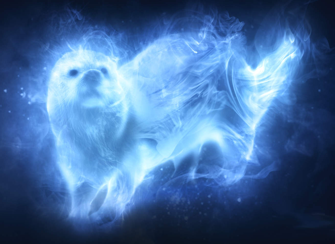 Image result for ron and hermione patronus