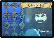 Hagrid-TCG