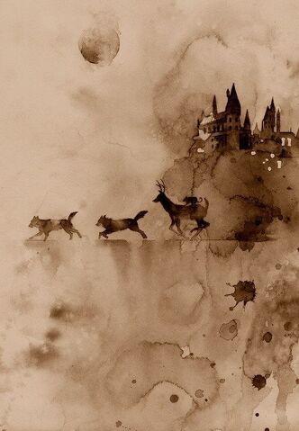 File:Harry-potter-hermione-granger-james-potter-art-Favim.com-4277009.jpg