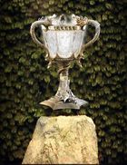 Taça Tribruxo 003